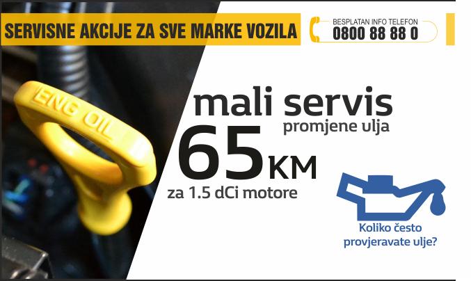 Mali servis 2016